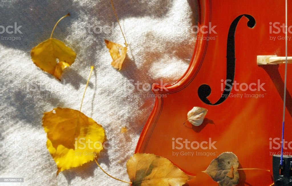 Cello with blanket outside on fall autumn day with colourful leaves stock photo