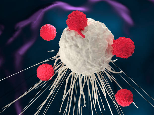 T cells around a cancer cell stock photo