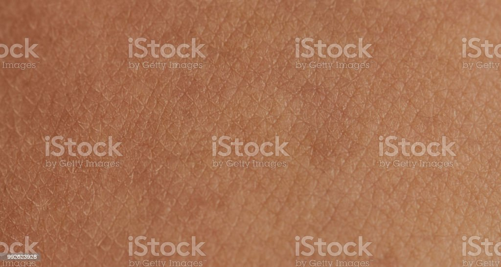 Cells on human skin stock photo
