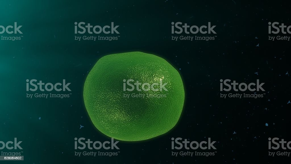 T Cells stock photo