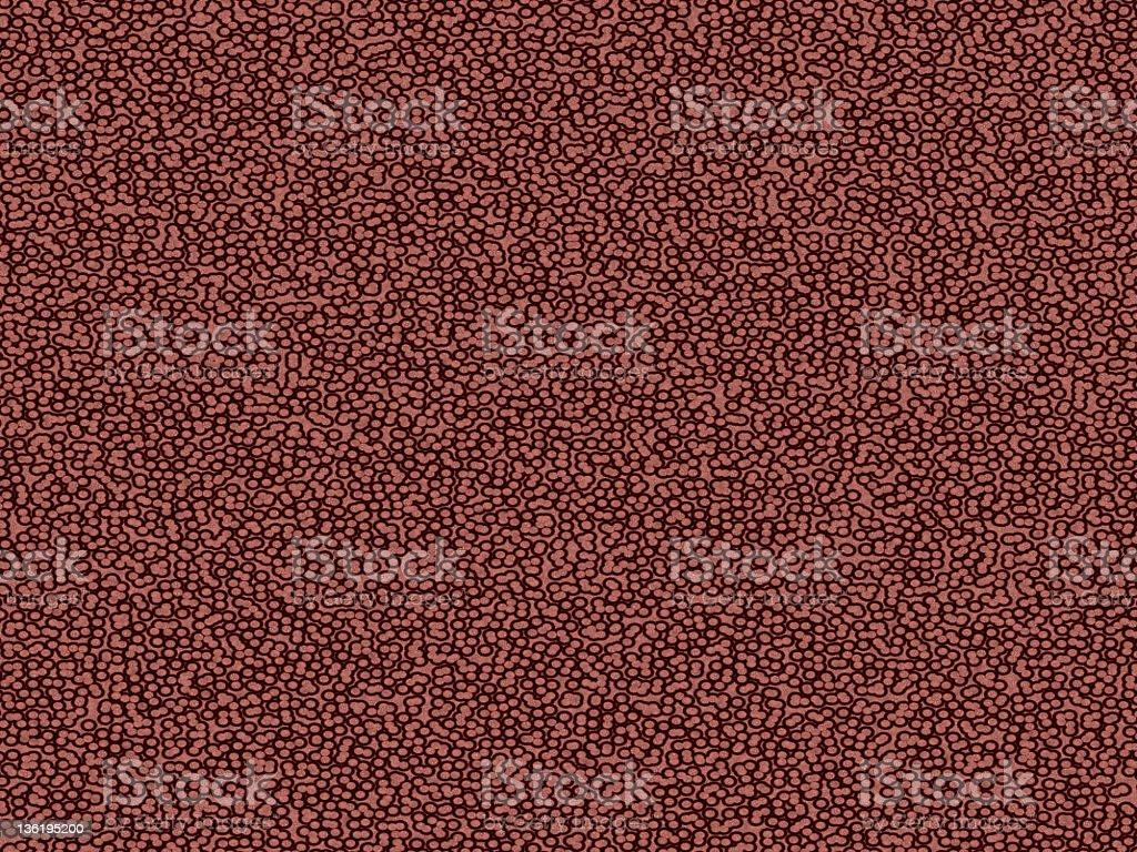 Células bajo el microscopio - foto de stock