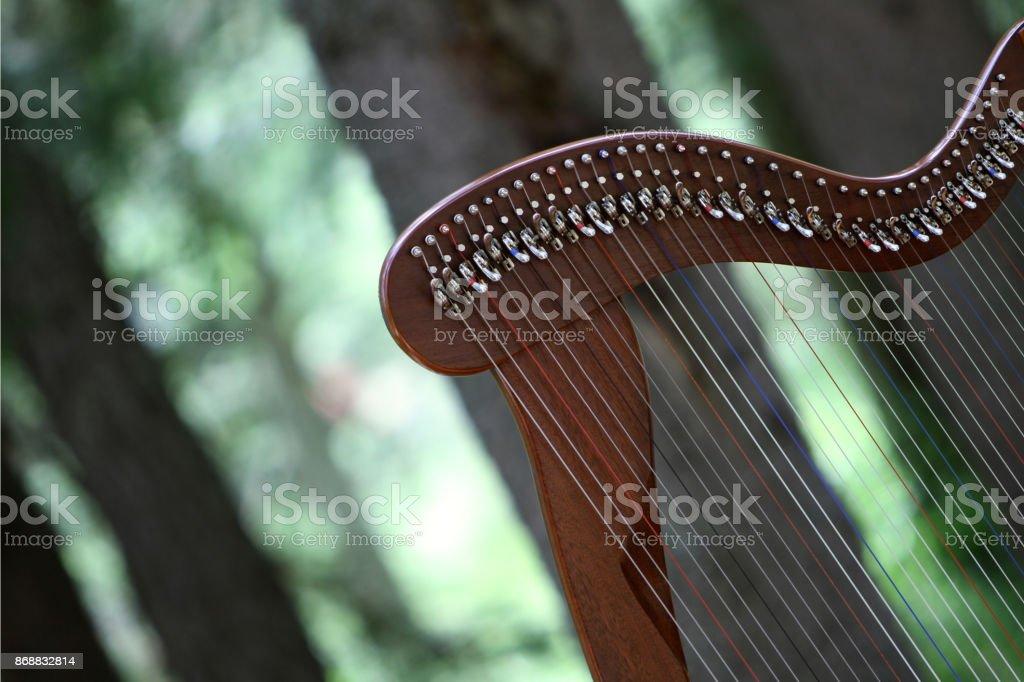 celtic harp - foto stock