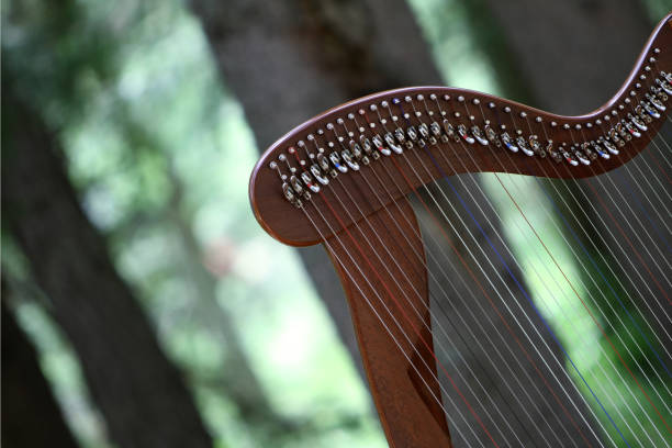 celtic harp - harpist stock photos and pictures