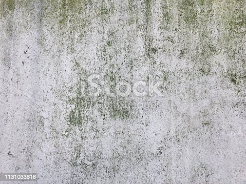Cement and concrete texture for background and design