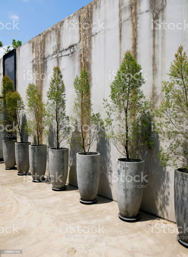 Cement Wall Decoration With Small Trees In Pot Plant Modern