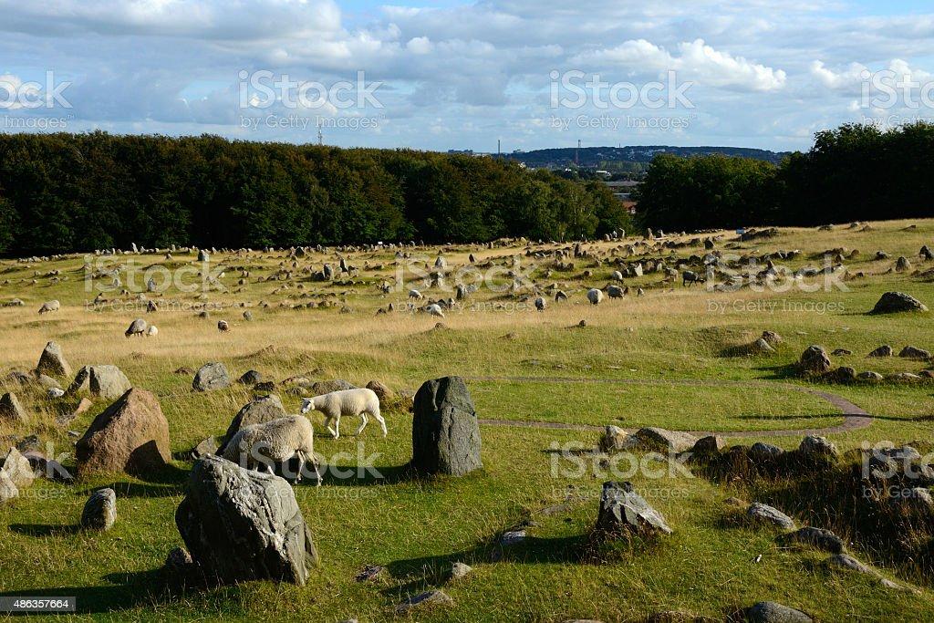 Cementerio vikingo de Lindholm Hoje, Aalborg, Dinamarca stock photo