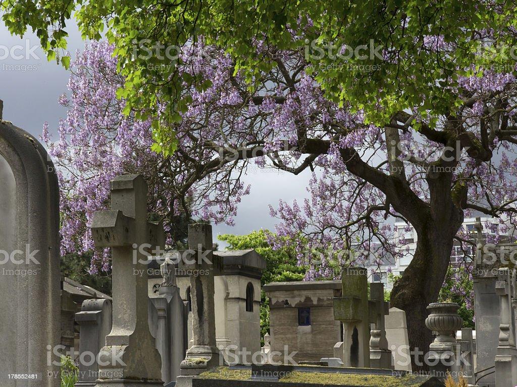 Cementery Paris royalty-free stock photo