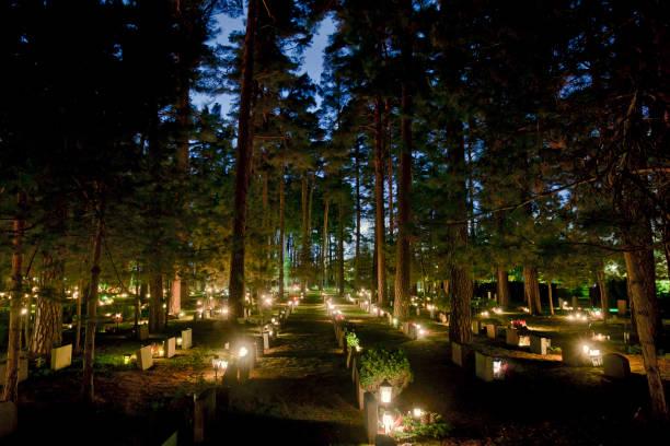 friedhof nightshoot während halloween - waldfriedhof stock-fotos und bilder