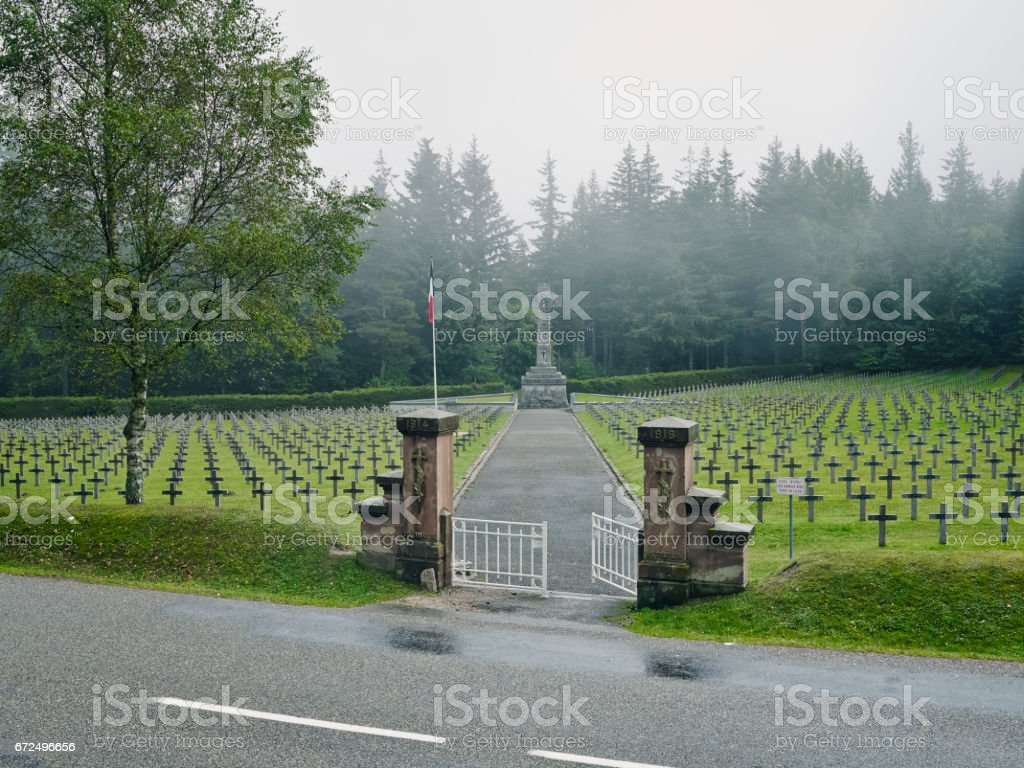Cemetery Forest Entrance stock photo