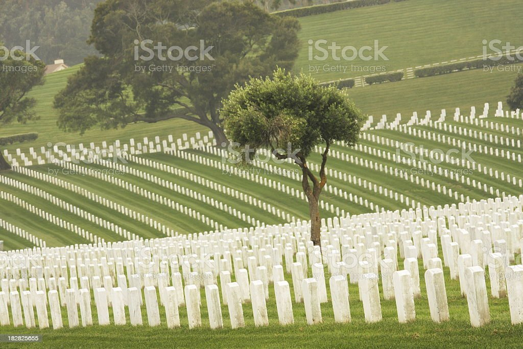 Cemetery Graves Dead Military Soldiers royalty-free stock photo