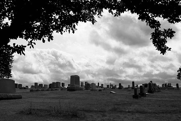 Cemetery gravestones framed by tree silhouette wtih cloudy sky stock photo