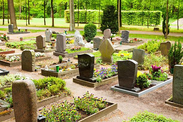 friedhof in wald - waldfriedhof stock-fotos und bilder