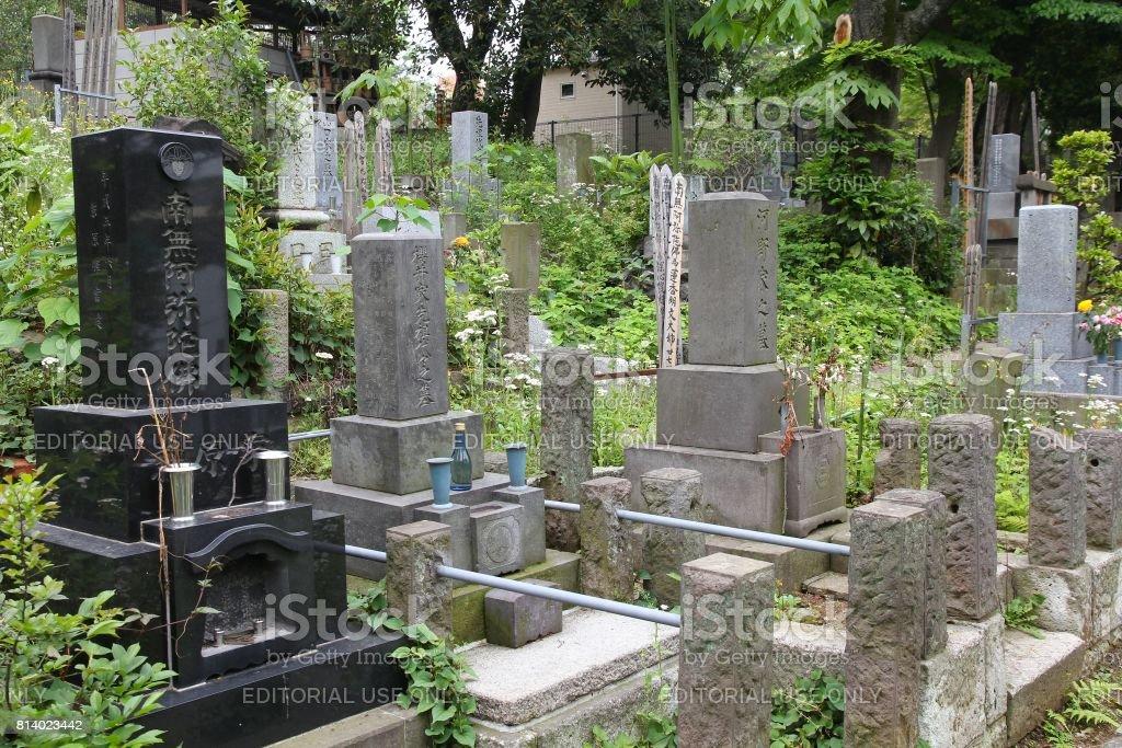 東京の墓地 ストックフォト