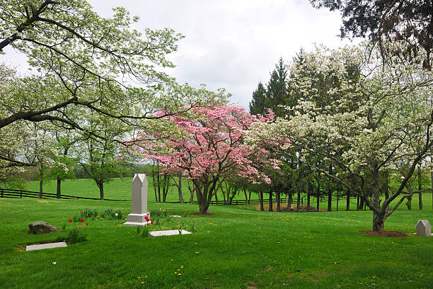 Cemetery Landscape in Spring stock photo