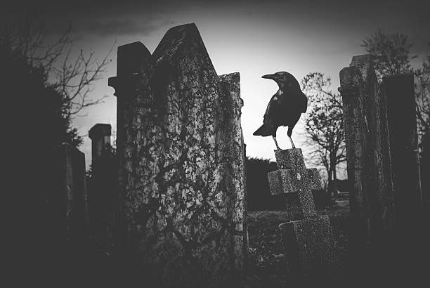 friedhof nacht - halloween grabsteine stock-fotos und bilder