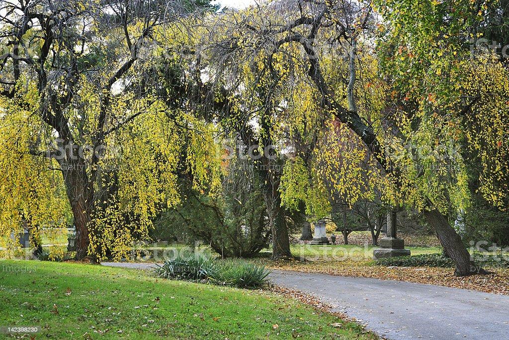 Cemetery Road In Autumn stock photo