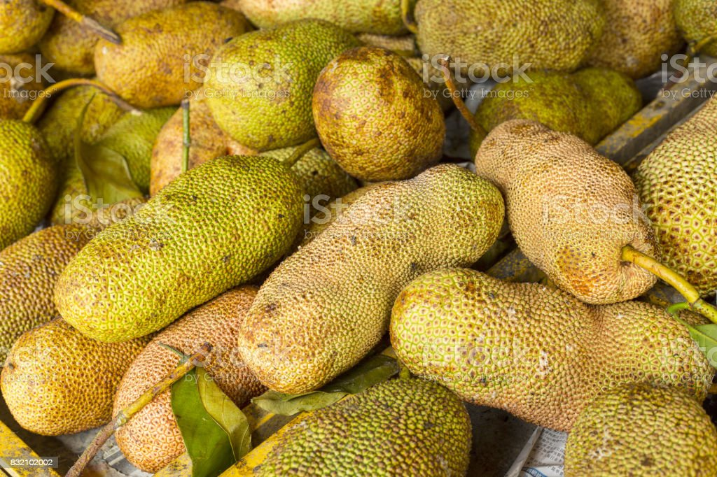 Cempedak or Ripe Artocarpus integer fruits stock photo