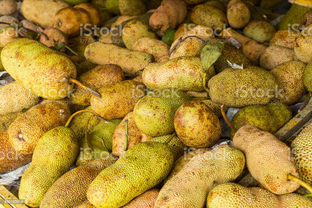 Cempedak stock photo