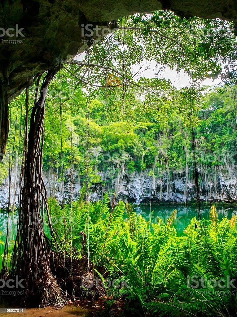 Cenote of Santo Domingo stock photo