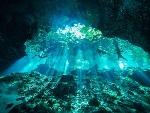 cenote dykning, undervattens grotta i mexiko - stalagmit bildbanksfoton och bilder
