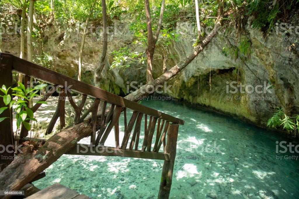 Cenote Tulum in Riviera Maya in Mexico royalty-free stock photo