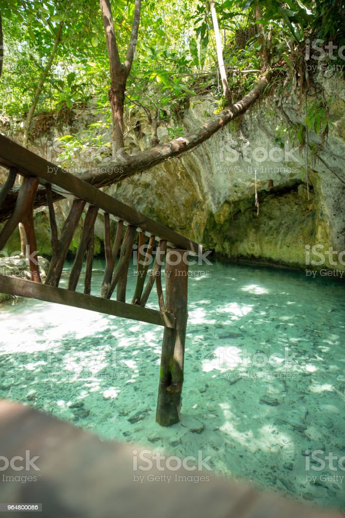 Cenote Tulum in Riviera Maya in Mexico royalty-free stock photo