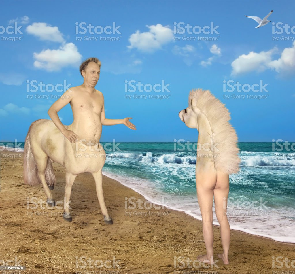 Centaur trifft auf ein seltsames Pferd - Lizenzfrei Abwesenheit Stock-Foto