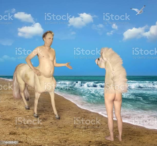 Centaur meets a strange horse picture id1164568401?b=1&k=6&m=1164568401&s=612x612&h=qpxhetoays3urdi tkt3z5a61ksiptd2mcl7lw60xe0=