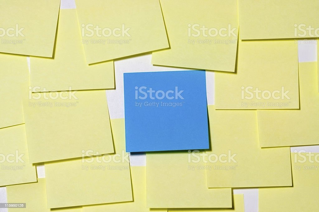 Center of attention royalty-free stock photo