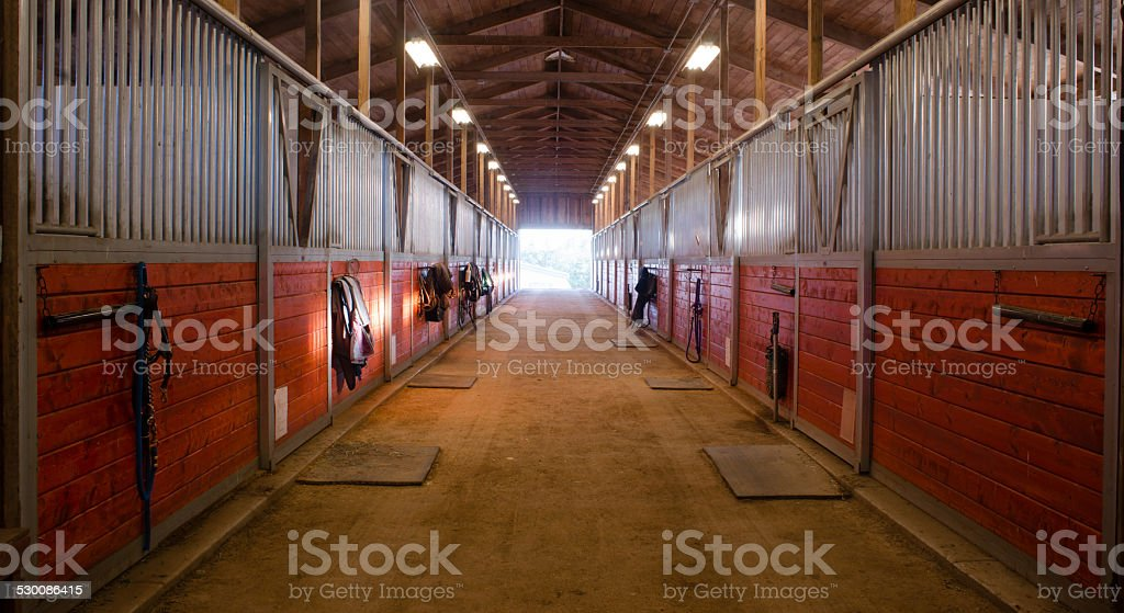 Center Path Through Horse Paddock Equestrian Ranch Stable stock photo