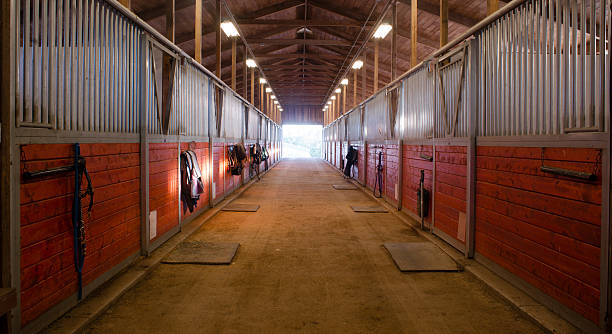 Center Path Through Horse Paddock Equestrian Ranch Stable The door shows outside from the horse stalls equestrain stable stable stock pictures, royalty-free photos & images