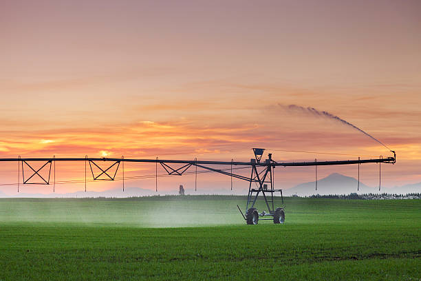 Center Pivot Irrigation Machine at Sunset Center pivot irrigator watering a field at sunset in summer. Mid Canterbury, New Zealand irrigation equipment stock pictures, royalty-free photos & images