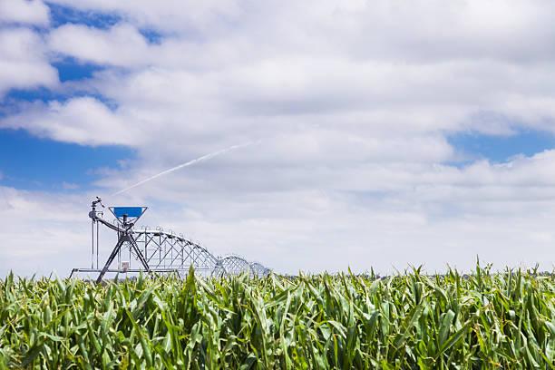 Center Pivot Irrigator mit Wasser sprühen crop – Foto