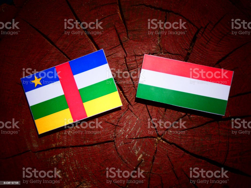 Central African Republic flag with Hungarian flag on a tree stump isolated stock photo