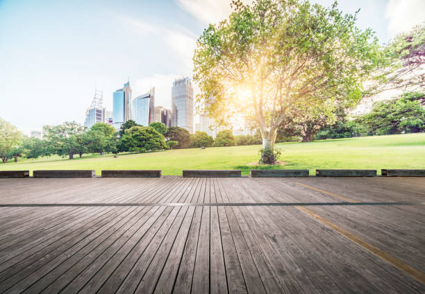 central business district of Sydney at daytime stock photo