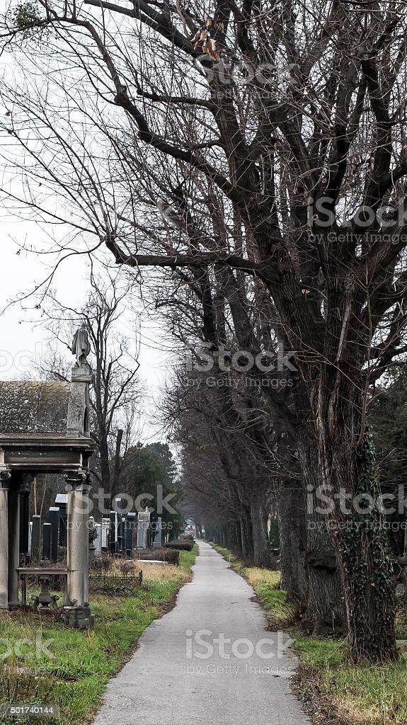 Central Friedhof – Foto