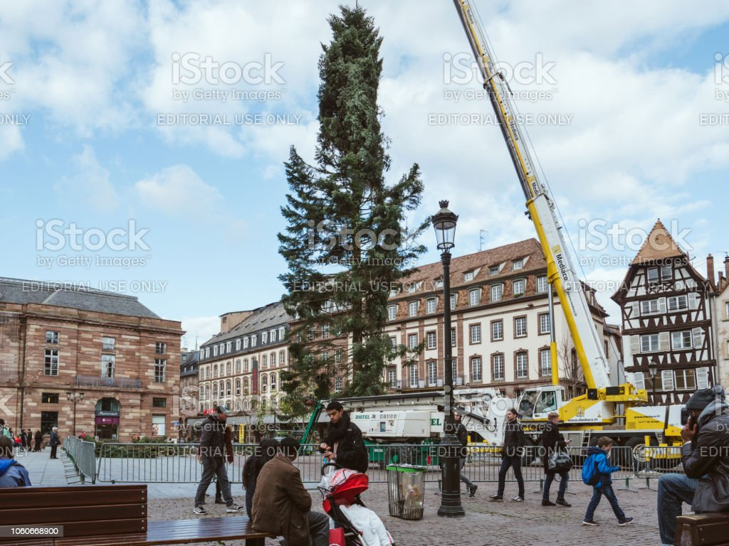 Central Christmas Tree Install in Place Kleber stock photo