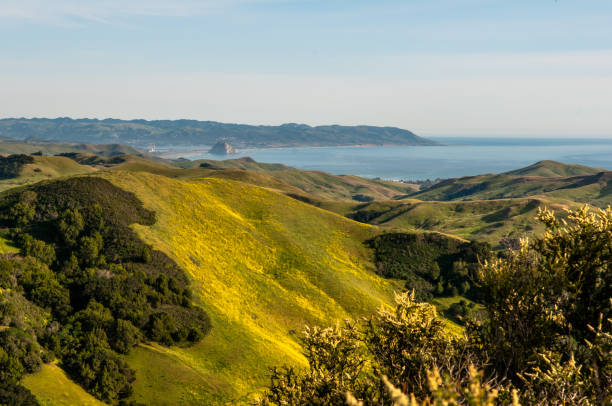 central coast california - central coast california stock photos and pictures