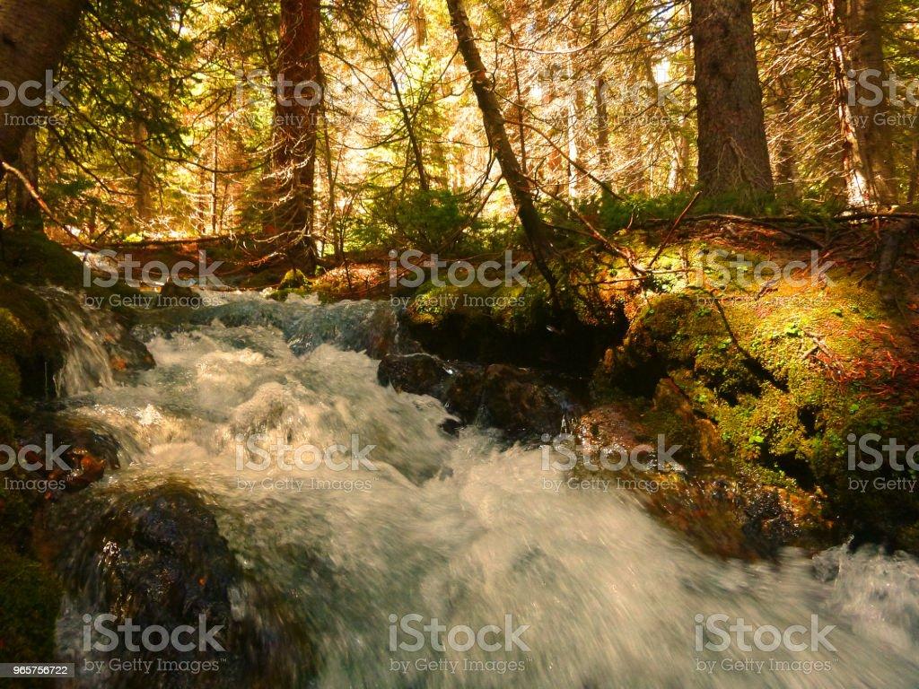 Central Idaho Beauty - Royalty-free Hiking Stock Photo
