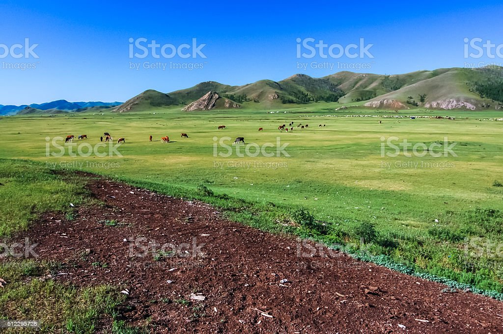 Central Mongolian steppe stock photo