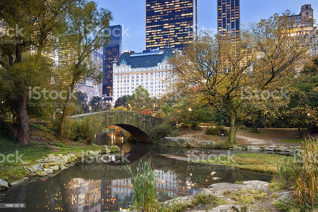 Central Park and Manhattan Skyline. stock photo