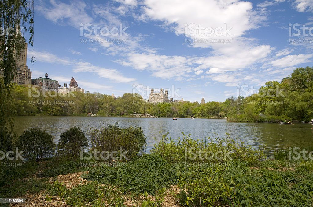 Central Park and New York City royalty-free stock photo