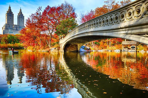 central parku w jesień - central park manhattan zdjęcia i obrazy z banku zdjęć