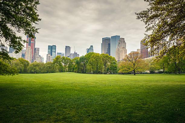 central park an regnerischen tag - twilight teile stock-fotos und bilder