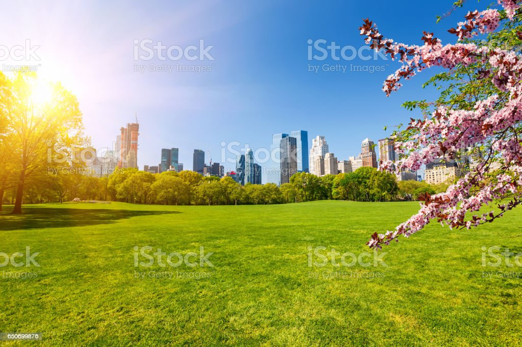 Central park at spring, New York – Foto