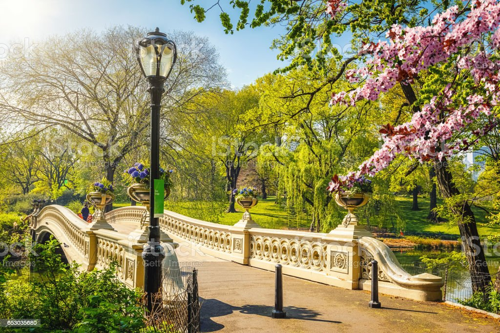 Central park at spring, New York stock photo
