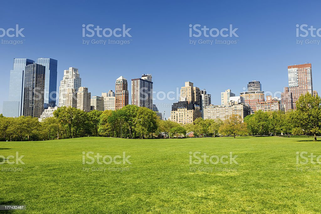 Central park at sunny day stock photo