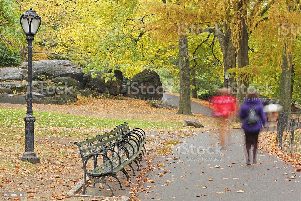 Central Park Autumn - New York royalty-free stock photo