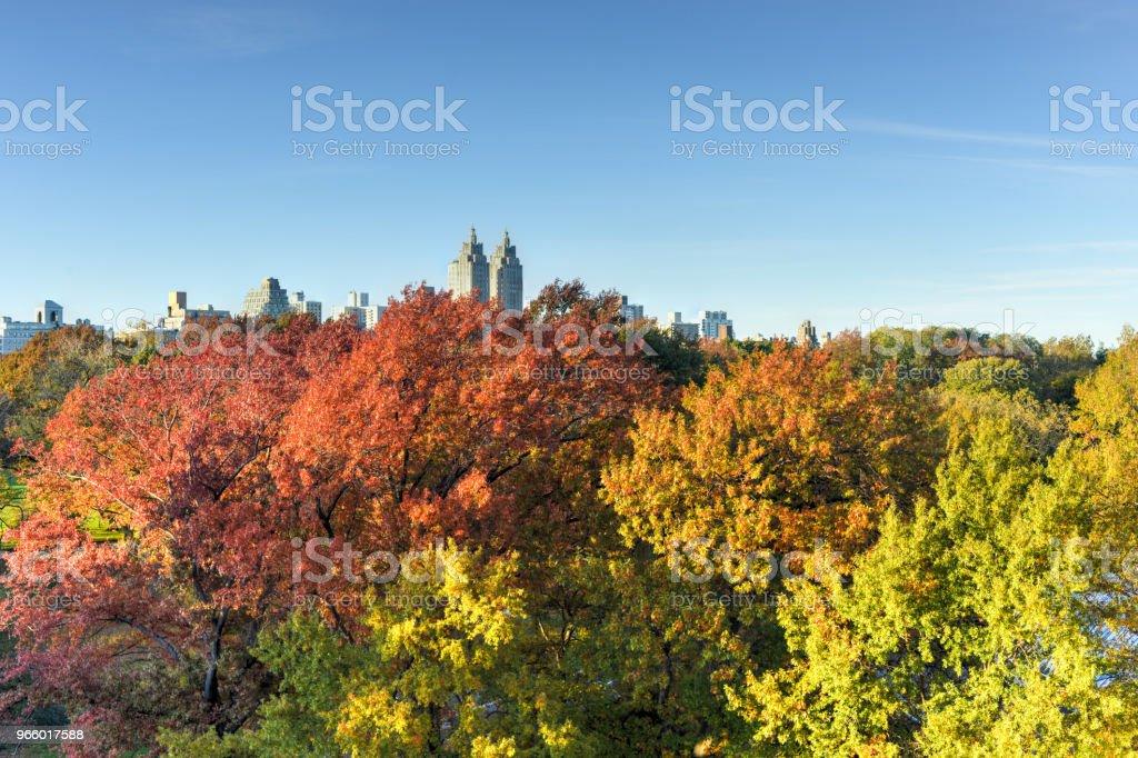Central Park, herfst, New York - Royalty-free Architectuur Stockfoto