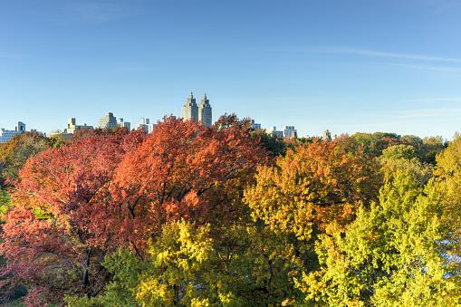 Central Park Herfst New York Stockfoto en meer beelden van Architectuur